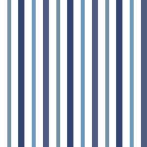 tissu coton enduit linge basque